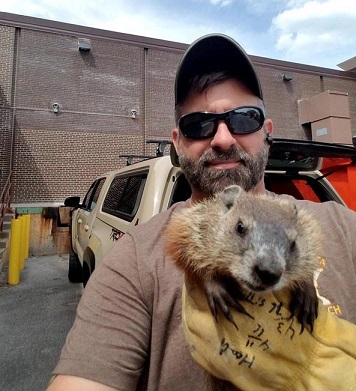 Professional Animal Control Services in Twin Cities, MN | Humane and Safe Animal Removal Services